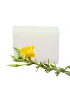 Ecol SOAP BAR Evening Primrose