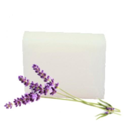 Ecol SOAP BAR Lavender