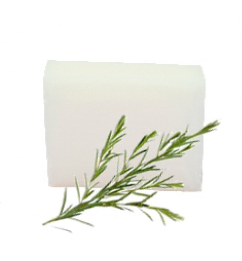 Ecol SOAP BAR Tea Tree