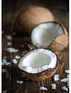 Coconut Refined Organic Oil