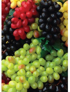 Grape Seed Oil Pure