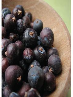Juniper Berry Extra Essential Oil