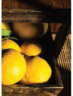 Lemon Cold Pressed Essential Oil