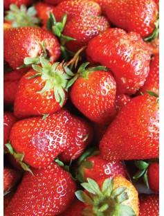 Strawberry Gel Safe Soap & Candle Fragrance